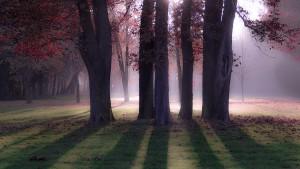 Meuselwitz Seckendorfpark
